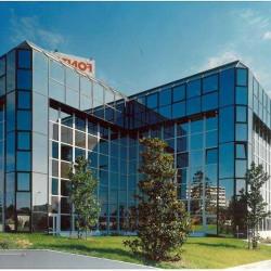 Location Bureau Toulouse 217 m²