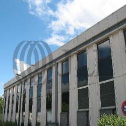 Location Local d'activités Limonest 7534 m²