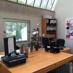 Vente Local d'activités Saint-Maur-des-Fossés 624 m²