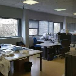 Location Local d'activités Gennevilliers 537 m²
