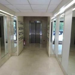 Location Bureau Palaiseau 4850,2 m²