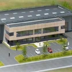 Vente Local d'activités Villenoy 2046 m²