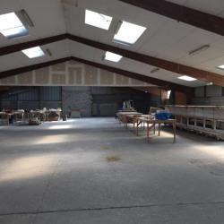 Vente Local d'activités Épreville 1000 m²