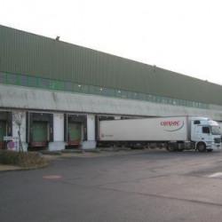 Location Entrepôt La Houssaye-en-Brie 11443 m²