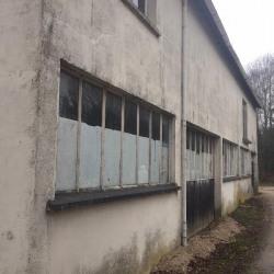 Vente Local d'activités Le Perray-en-Yvelines (78610)