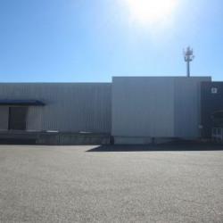 Location Local d'activités Sélestat 7565 m²