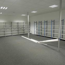 Location Local d'activités Clichy 275 m²