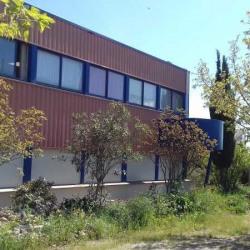Location Local d'activités Bessan 425 m²