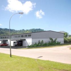 Vente Entrepôt Remire-Montjoly 1275 m²
