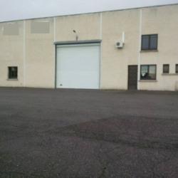 Location Local d'activités Saint-Alban 1710 m²