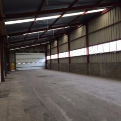 Vente Local commercial Épouville 3600 m²