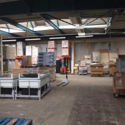 Vente Entrepôt La Balme-de-Sillingy 536 m²