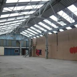 Location Local d'activités Villers-Écalles 1023 m²