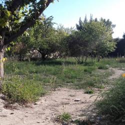 Terrain  de 172 m²  Cadenet  (84160)