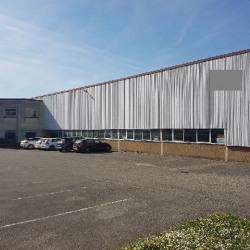 Location Local d'activités / Entrepôt Chaponnay