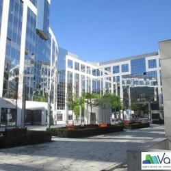 Location Bureau Noisy-le-Grand 534 m²