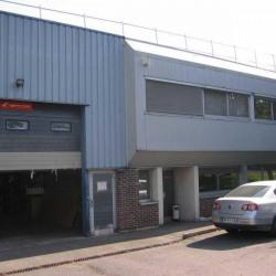 Location Local d'activités Antony 597 m²