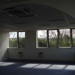 Location Bureau Saint-Thibault-des-Vignes 1366 m²