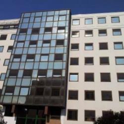 Location Bureau Lyon 3ème 265 m²
