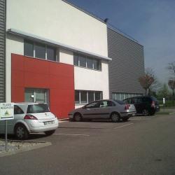 Location Local d'activités Saint-Priest (69800)