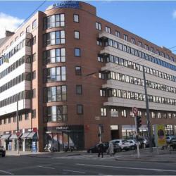 Location Bureau Lyon 6ème 262 m²