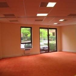 Location Bureau Saint-Germain-en-Laye 252 m²