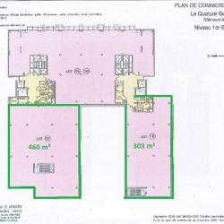 Location Bureau Lyon 7ème 2945 m²