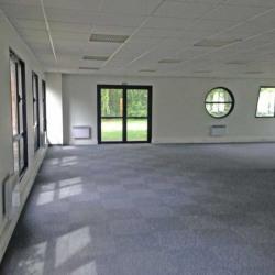 Location Bureau Villeneuve-d'Ascq 583 m²
