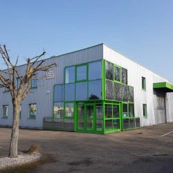 Location Entrepôt Geispolsheim 380 m²
