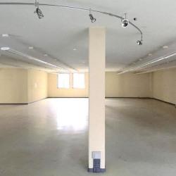 Location Local d'activités Villeurbanne 501 m²