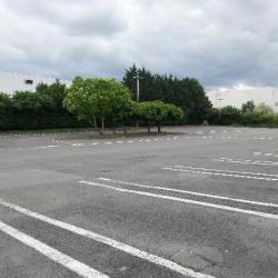 Location Local d'activités Tremblay-en-France 6784 m²
