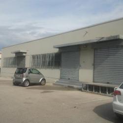 Location Local d'activités Saint-Jeannet 250 m²