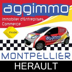 Location Bureau Montpellier 68 m²