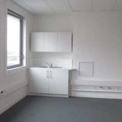 Location Bureau Villeneuve-d'Ascq 1180 m²