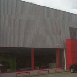 Location Local d'activités Kingersheim 400 m²