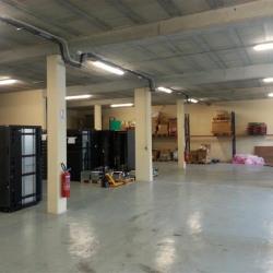 Vente Local d'activités Brie-Comte-Robert 3100 m²