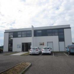 Location Local d'activités Molsheim 111 m²