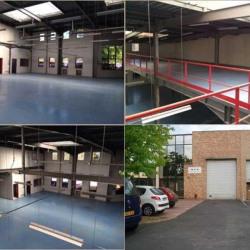 Location Local d'activités Montmagny 707 m²