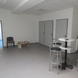 Location Local d'activités Castries 600 m²