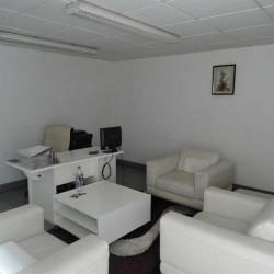 Location Local d'activités Mitry-Mory 340 m²