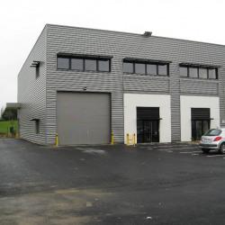 Vente Local d'activités Villejust 390 m²