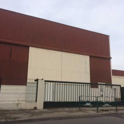 Location Local d'activités Vaulx-en-Velin 700 m²