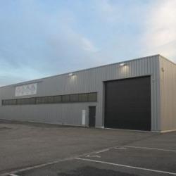 Location Local d'activités Wolfisheim 1650 m²