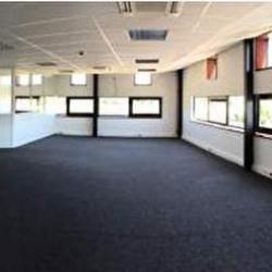 Location Local d'activités Mérignac 530 m²