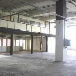 Location Local d'activités Montreuil 3217 m²