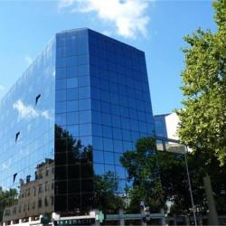 Location Local commercial Lyon 3ème 259,95 m²