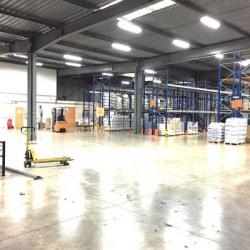 Location Local d'activités Roissy-en-Brie 2039 m²