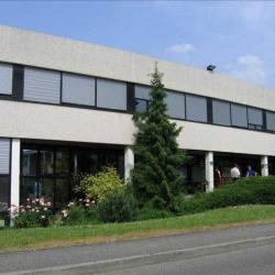 Vente Bureau Oberhausbergen 160 m²