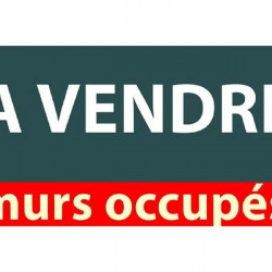 Vente Local commercial Montpellier (34070)