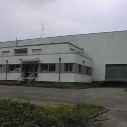 Location Local d'activités Brumath 2720 m²
